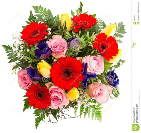 colorful spring flowers bouquet fresh colorful spring flowers bouquet stock photos image