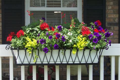window box planters for railings lawn garden awesome black iron planter deck railing