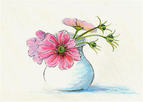 Drawing Of Flowers In Vase by Pcjournal I Can Draw 1