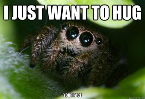 Sad Spider Meme - cute spider meme