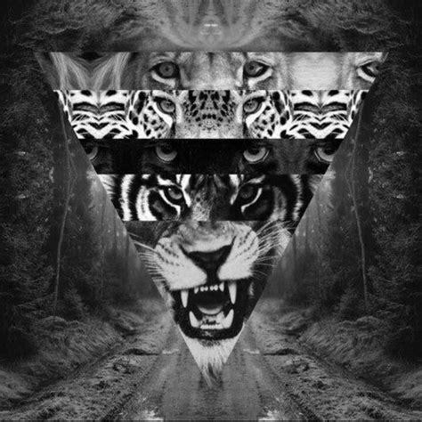 black and white hipster wallpaper love hipster black and white tiger triangel big
