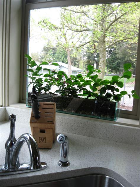Welche Fenster Deko Nach Weihnachten by Fensterbank Deko Die Farben Der Natur Durch Pflanzen