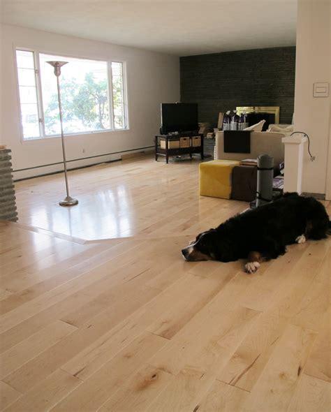 Stylish Living Room installing maple hardwoods in the living room merrypad