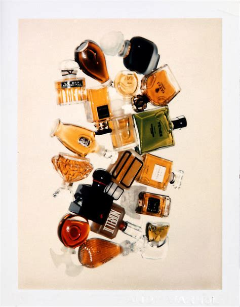 Home Interiors Website andy warhol s still life polaroids the gorgeous daily