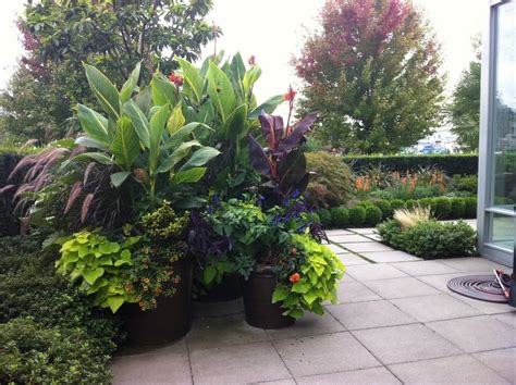 Backyard Plant Ideas Large Container Gardens Garden Container Design Garden Grasses Ideas Large Container