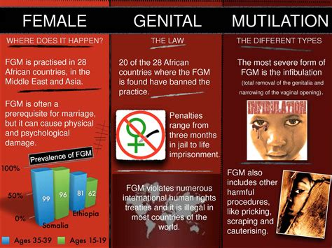 infibulation mutilation in islamic northeastern africa books calam 233 o leaflet fgm in africa and the world by