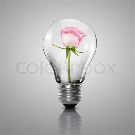 with light inside electric light bulb and flower inside it as symbol of