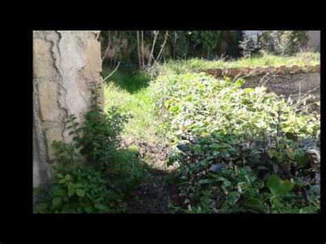 come sistemare un giardino fai da te come sistemare un giardino incolto fai da te mania