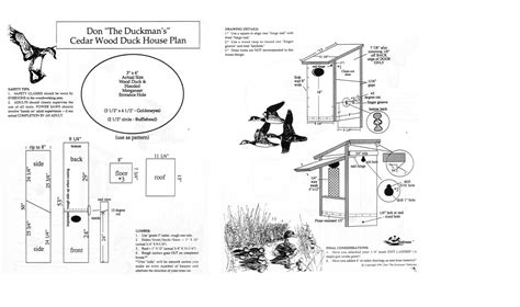 put   wood duck house update creating habitat pond