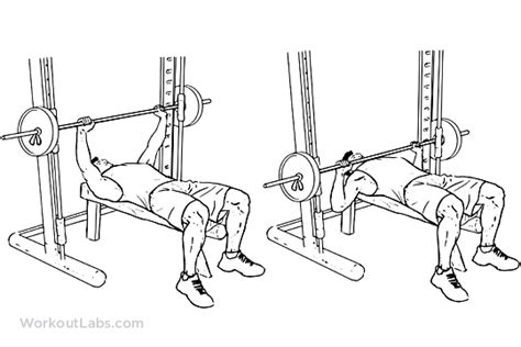 smith machine flat bench press smith machine chest press illustrated exercise guide