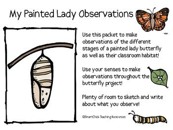 printable caterpillar observation journal my painted lady butterfly observation journal by smart