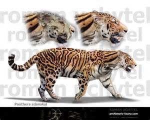 Prehistoric Jaguar Longdan Tiger V Sumatran Tiger