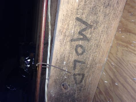 mold treatment crawl space and basement waterproofing in