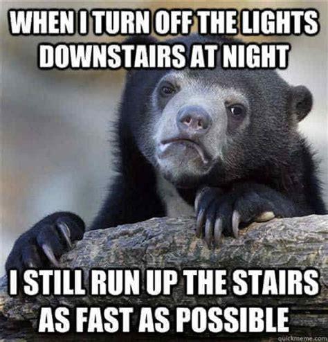 Running Bear Meme - 35 of the best confession bear meme pictures that will