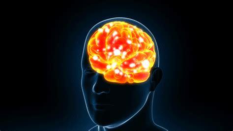 brain x human brain x on wacom gallery