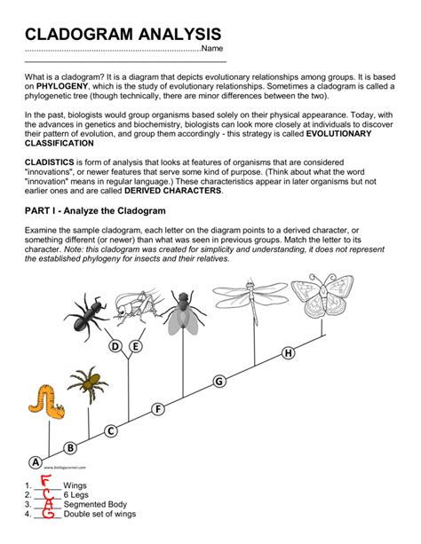 Cladogram Worksheet Answers by Uncategorized Cladogram Worksheet Answers