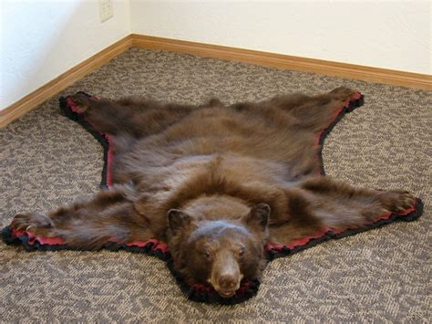 skin rug real black skin rugs home design ideas