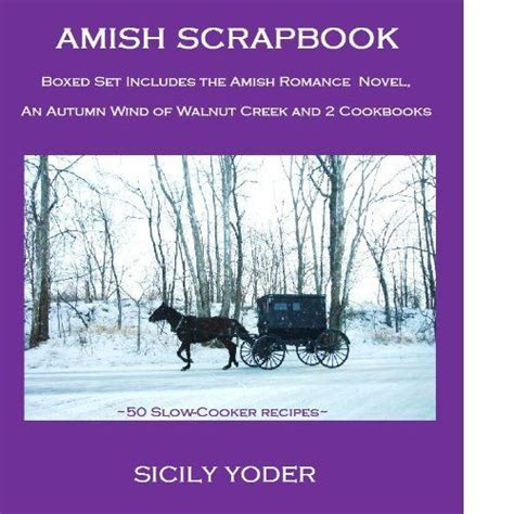 the amish and garden amish outcasts books top 75 ideas about amish sicily yoder on