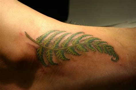 fern tattoo meaning 17 best images about fern on leaf