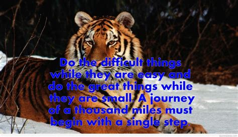 motivational quotes life quotes  wallpapers