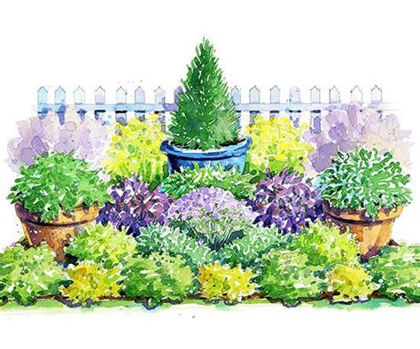 herb garden plan colorful herb garden plan