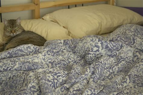 bed file file comforter on bed jpg wikimedia commons