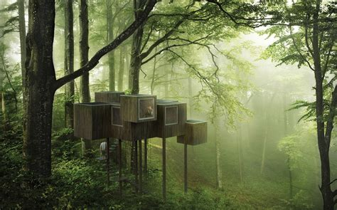 triumph architectural treehouse award 2014 a e architect