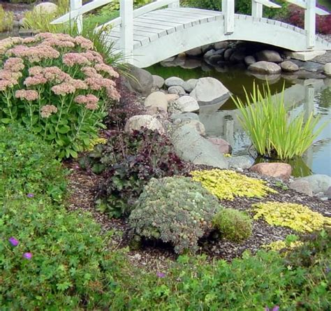 turtle ponds for backyard 75 best turtle ponds images on pinterest backyard ideas
