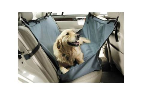 Hundere F Rs Auto by Hunde Schondecke F 252 Rs Auto