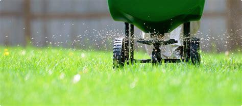 minneapolis lawn fertilization weed control services