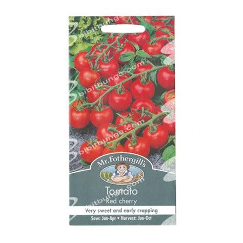 Benih Biji Cherry Ungu Import Korea benih tomato cherry 50 biji mr fothergills