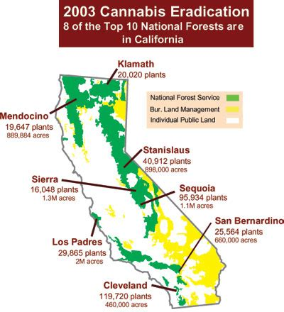 california map national forests national forests of california