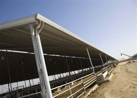 Rainwater Guttering For Sheds by Gutters On A Dairy Shed In Chowchilla California 1 Photo Gallery 4