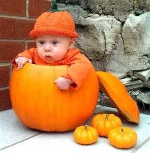 babies inside pumpkins will make you smile