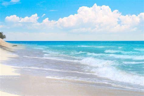boat trips from key west to bahamas day trip to bimini bahamas with transportation economy