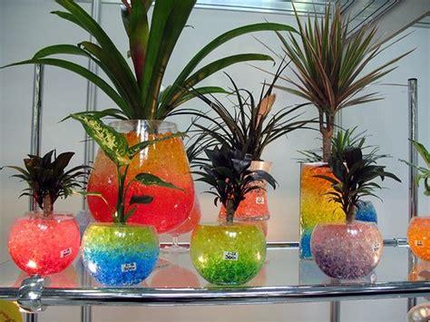 Jual Bahan Hydrogel tanaman hias lebih indah dengan media tanam hidrogel