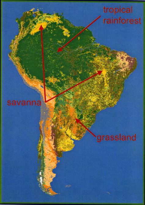 geograf 237 a de los suelos del mundo los biomas del mundo y