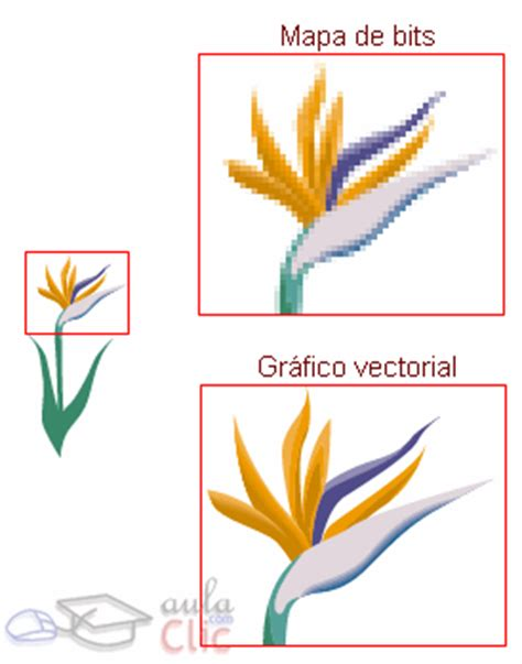 imagenes vectoriales en flash curso gratis de flash cs4 aulaclic 9 b 225 sico gr 225 ficos