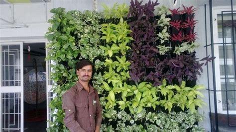 sanjay nursery plant nursery in pune mumbai india