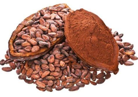 The Cocoa Cocoa Botanical Sheet Princeuduak Post