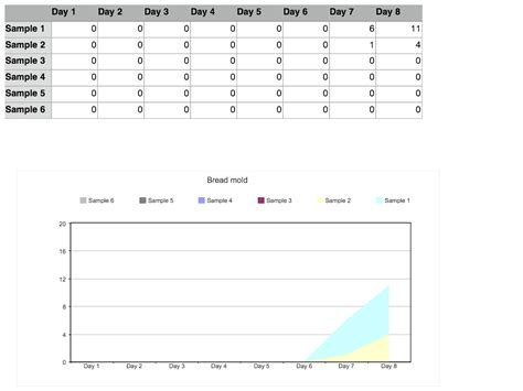 Table Data In Html We Mold You Data Table