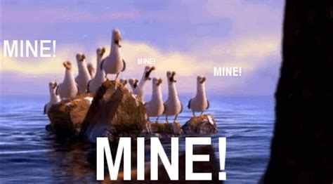 Finding Nemo Seagulls Meme - pirate4x4 com 4x4 and off road forum view single post