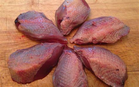 Breast Pigeon pigeon with walnut pear and pecorino salad shooting uk