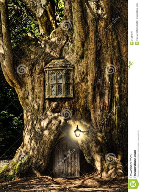 libro the faery forest an fantasy fairytale miniature house in tree royalty free stock photography image 21211807