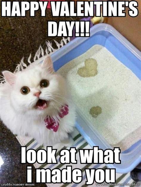 happy valentines day animals animals www imgkid the image kid