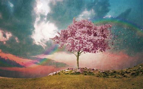 spring paint wallpaper sakura flower spring paint tree clouds sky