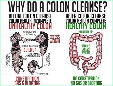 Benefits Cleanse Detox by Colon Cleanse Health Benefits Uses Garcinia Cambogia