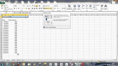 nutrition spreadsheet template how to use microsoft excel spreadsheets to track daily