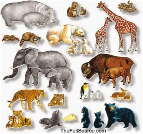 imagenes de animales vertebrados wikipedia los animales vertebrados e invertebrados imagenes
