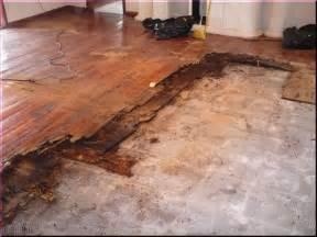 interior design ideas for living room engineered hardwood flooring cost robobrien me